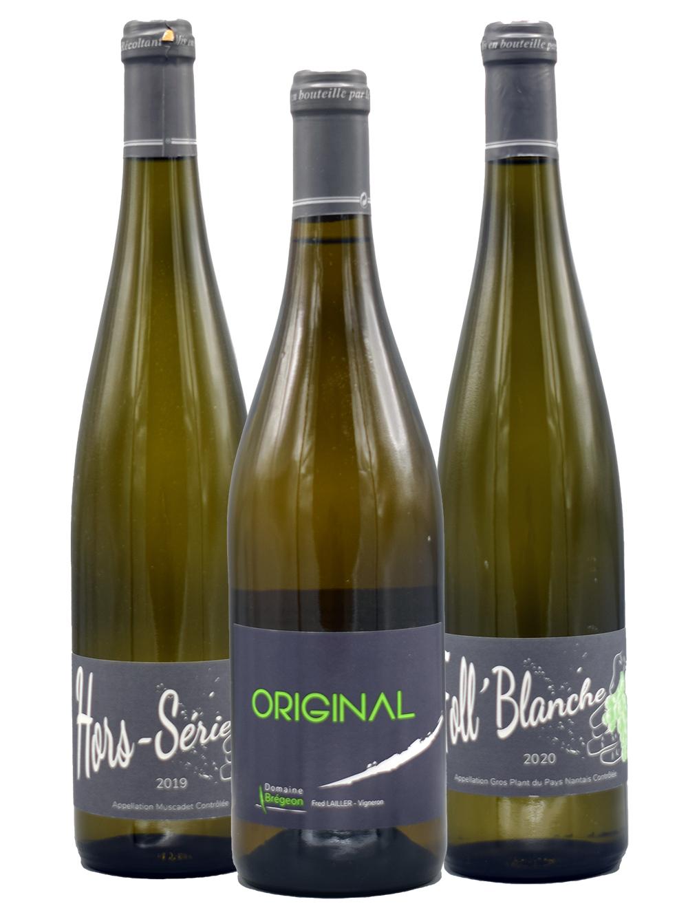 Ontdek de wijnen van Domaine Brégeon