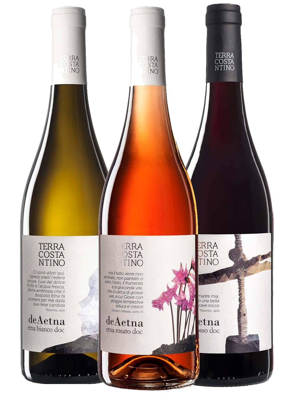 Ontdek de wijnen van Terra Costantino